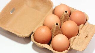 Auchan no venderá huevos de gallinas criadas en jaulas