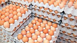 Nuevo caso de huevos con fipronil, ahora en Cataluña