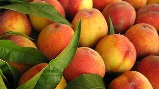 """UPA ve """"insuficiente"""" el plan de mejora para la fruta dulce"""