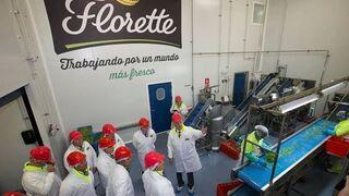 Florette amplía su centro de producción en Canarias