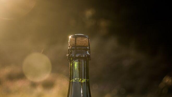 Nueva Mica Sin, cerveza sin alcohol muy baja en calorías