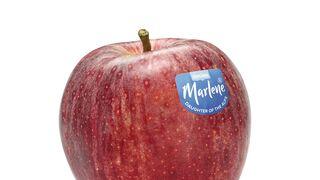 Las manzanas Marlene se 'visten' con un nuevo look