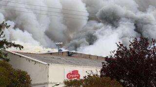 El resurgir de Campofrío tras el fuego, en un documental
