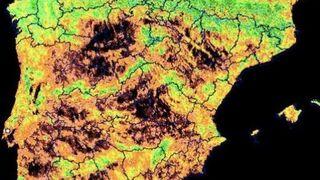 La burbuja de la sequía en los alimentos