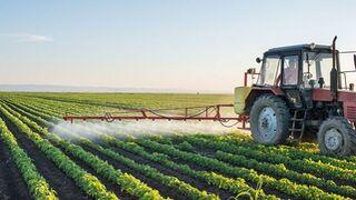 Los productores animan a comprar alimentos españoles