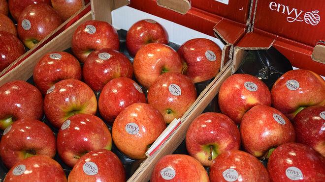 La manzana envy vuelve... con 2.000 toneladas