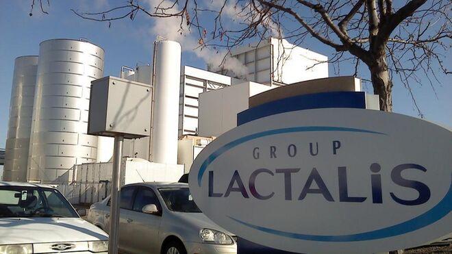 En marcha la planta de Lactalis foco de salmonela