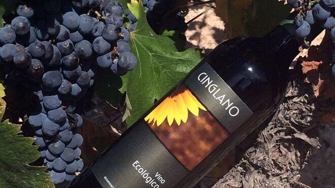 Lidl logra diez premios con sus vinos de menos de 10 euros