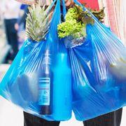 Plástico: leyes y conciencia hasta la autorregulación