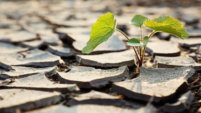 La Teledetección, una aliada en la lucha contra la sequía