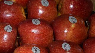 La 'superdulce' manzana envy gana presencia en el lineal
