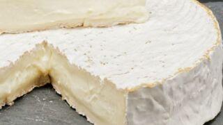 Retiran unos quesos de oveja por un caso de meningitis