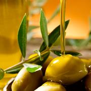 Desciende la producción de aceite de oliva