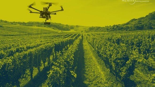 Bodegas Lahoz utiliza drones para mejorar su producción