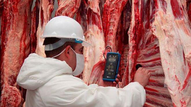 El Gobierno confirma la entrada en España de carne de vaca enferma