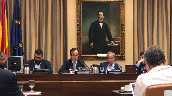 Fiab expone en el Congreso los males y los retos del sector