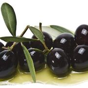 Los aranceles a la aceituna negra minan las exportaciones