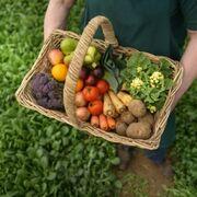 Los productos Bio ya suman 282 millones de euros en ventas