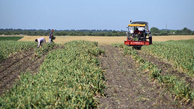 Control vía satélite de cultivos con fondos de la PAC