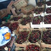 Incautados 580 kilos de cerezas y 21 de ajos en Salamanca