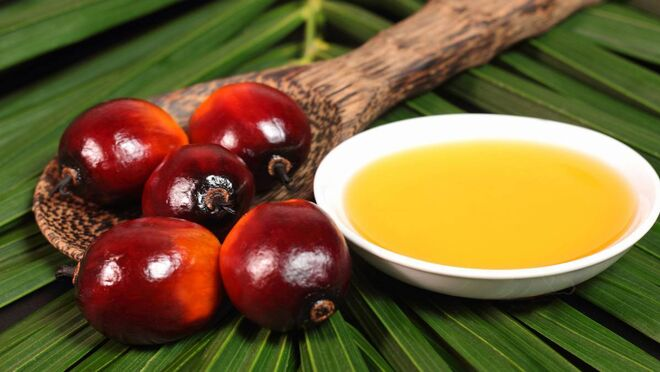 Aceite de palma en España para alimentación: ¿es sostenible?