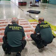 La Guardia Civil inmoviliza 153,5 toneladas de cigalas sin garantías sanitarias en Galicia