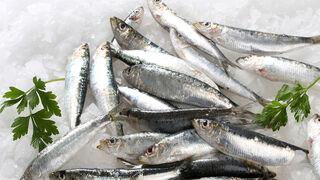 Primeros casos de anisakis incluso en pescado congelado