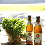 El Biergarten cervecero llega a Madrid de la mano de Paulaner