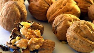Nueces españolas, a debate en Fruit Attraction