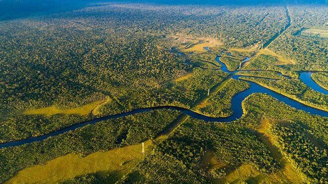 Nestlé controlará por satélite el suministro de aceite de palma