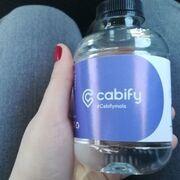Sant Aniol: esta es la empresa que te da de beber en los coches de Cabify