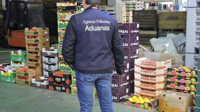 Gran operación contra el fraude en mercados centrales de fruta