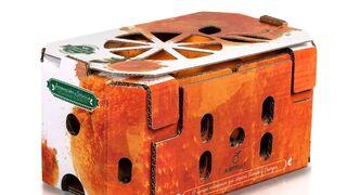 Rambleños: nuevo diseño para su envase Airfruit