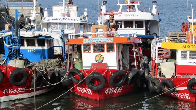 La Covid-19 pasa factura a la pesca española por desplome de la hostelería