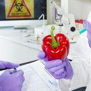 ¿Por qué medios serios se suman a la teoría de la conspiración contra el sector alimentario?