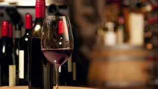 El Gobierno busca el mejor vino de España