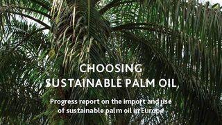 La industria del aceite de palma defiende su sotenibilidad