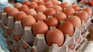 Aldi adelanta su plan de 'gallinas libres' y prioriza la carne nacional