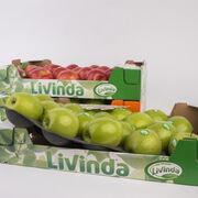 Manzanas Livinda reducirá 14 toneladas de plástico anuales