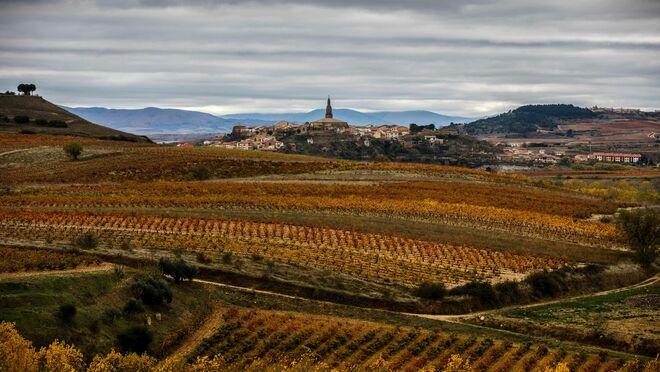 Los vinos españoles que se beben en Juego de Tronos