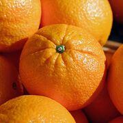 Cítricos de Sudáfrica: utilizan 62 pesticidas prohibidos