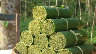 Pajitas vegetales: una alternativa al plástico