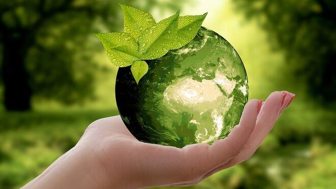 Día del Medio Ambiente: cómo alimentar al planeta de forma sostenible