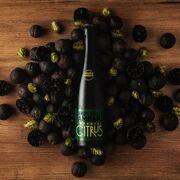 Ambar lanza Imperial Citrus, su nueva cerveza Ambiciosa