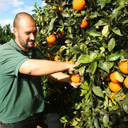 El sector agroalimentario desconfía del acuerdo de la UE con Mercosur