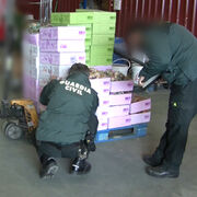 La Guardia Civil destapa un fraude de falsos alimentos 'bio'