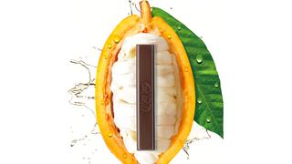 Nestlé lanza el primer chocolate elaborado solo con el fruto del cacao