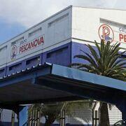 La 'vieja' Pescanova retomará su actividad en Sudamérica