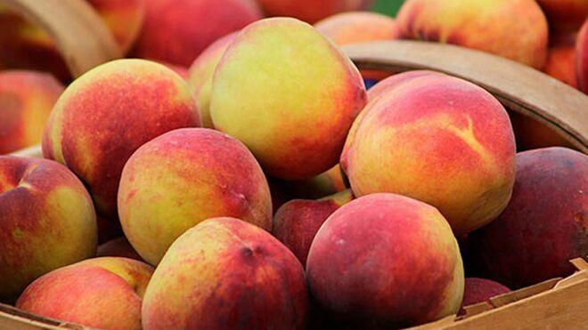 ¿Qué le pasa a la fruta de hueso?