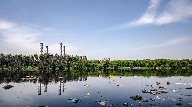 Medidas para frenar el desastre ambiental: lo que puedes hacer